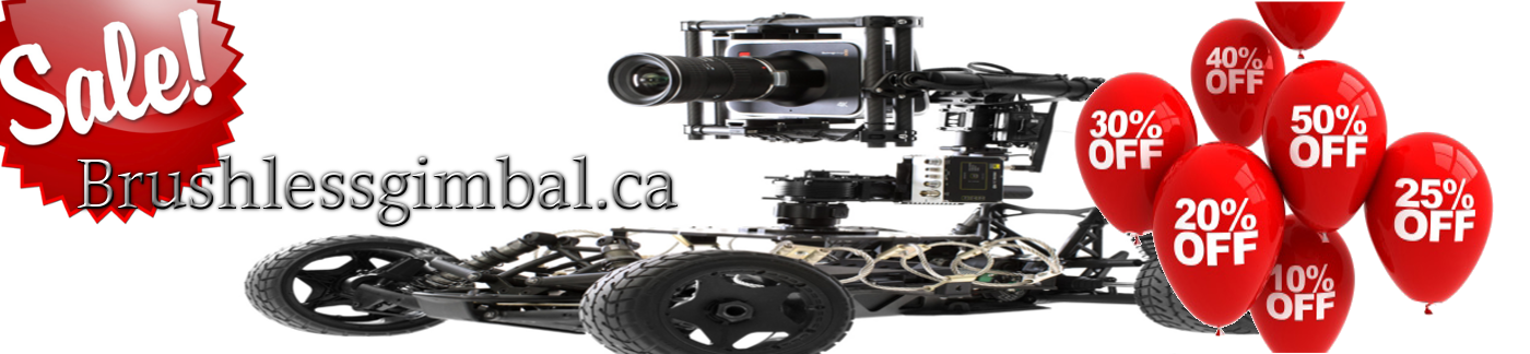 RC, FPV, BGC Parts go to sale at brushlessgimbal.ca